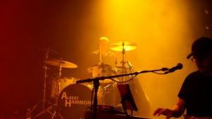 Albert Hammond 01 Lars (16) (Medium)